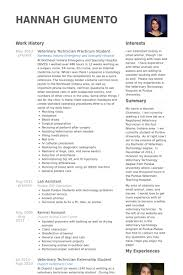 Veterinary Resume Samples - Visualcv Resume Samples Database