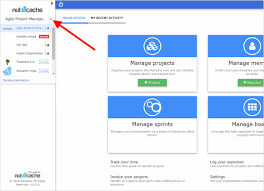 Project Management In Access 8 New Features To Optimize Your Project Management Nutcache