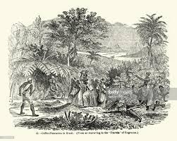 coffee plantation illustration. Perfect Coffee Coffee Plantation In Brazil Mid 19th Century  Stock Illustration Intended E