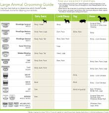 Andis Grooming Chart Andis Grooming Blade Chart Best Picture Of Chart Anyimage Org