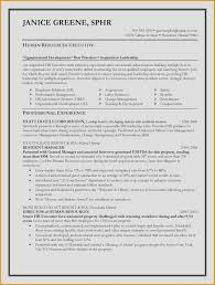 Resume Writer Nyc Beautiful Resume Writing Services Nyc Awesome
