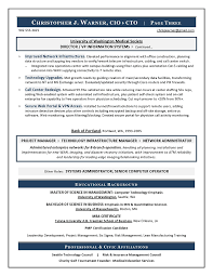 Sample Cio Resume From Executive Resume Writer It Resume Writer