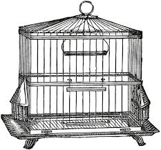 Exquisite Vintage Wire Bird Cage Image Vintage Wire Bird Cage Image  Graphics Fairy in Vintage Bird