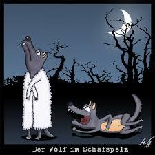 Bildergebnis für wolf im schafspelz
