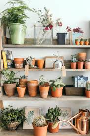 Window Plant Shelf Outdoor Stand In Front Of Wall. Plant Shelves Diy Shelf  Wall Ideas. Plant Shelves Outdoor Bunnings Shelf Ideas Decorating.