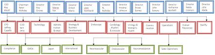 Boston Scientific Company Profile Dolcerawiki