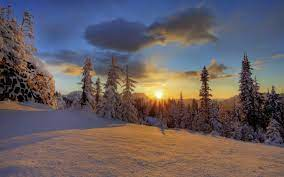Mount Rainier National Park Winter ...