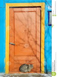 painted cats and flowers on front door furry cat near bright painted door in winter stock photo