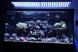 orphek reef aquarium led light atlantik v4 best led aquarium lighting9