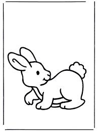 Disegno Da Colorare Per Bambini Facile Coniglio Disegni Da