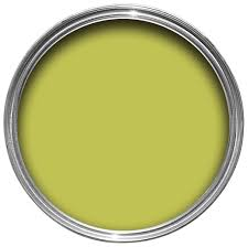 Dulux Kitchen Luscious Lime Matt Emulsion Paint 2.5L | Departments | DIY at  B&Q