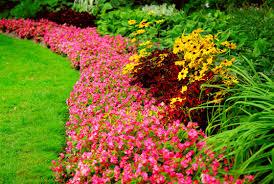 easy flower garden ideas photograph steps to a new design perennial flower bed landscaping ideas