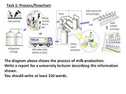 Task 1 Process Flowchart Ppt Video Online Download