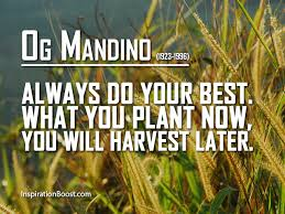 Og Mandino Quotes Enchanting Og Mandino Do Your Best Quotes Inspiration Boost