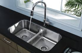 Double Kitchen Sink Pops Discount Building Materials