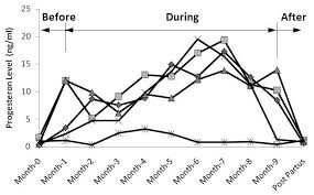 Normal Progesterone Levels In Pregnancy Chart Serum Progesterone Concentration In Bali Cow During Pregnancy