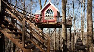 treehouse masters brewery. AddThis The Bar Built In A Tree House Treehouse Masters Brewery D