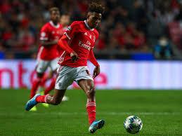 Benfica manager drops big hint over Gedson Fernandes ...