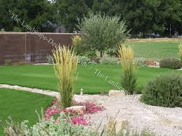 Small Picture Mediterranean Front Yard Planting Tips