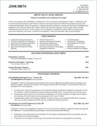 Sample Marketing Consultant Resume Resume Of Brand Manager Marketing ...