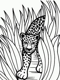 Small Picture Good Jaguar Coloring Pages 42 In Coloring for Kids with Jaguar