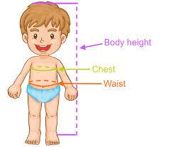 Eur Child Clothing Size 4 7 Yrs