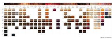 Redken Hair Color Chart Schwarzkopf Igora In 2019 Redken Hair Color Schwarzkopf