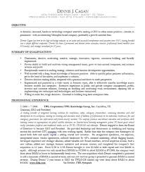 ceo resume sample doc