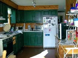 Should I Paint My Kitchen Cabinets White Cool Decoration