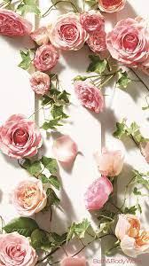 Rose Iphone Wallpaper - Pink Roses ...