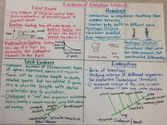 Big Ideas In Biology Chart Answers 30 Best Biology Glad Charts Images Biology Teaching