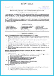 Business Development Manager Resume Assistant Template Summary