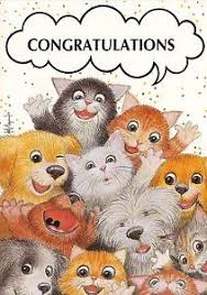 Resultado de imagen para congratulations cats