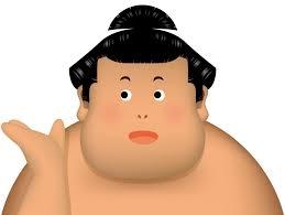 相撲の髷の種類についてお手入れやその他の疑問にお答えします 虹ブロ
