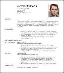 Modelo Curriculum Vitae Experto En Excel Livecareer