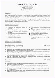 Day Care Responsibilities Resume Resume Team Leader Responsibilities