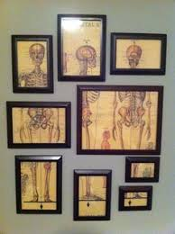 gallery of best 10 medical wall art anatomical decor best office art