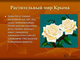 Презентация на тему Природа моего родного края Крыма Выполнили  6 Растительный