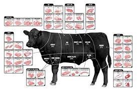 beef cuts diagram poster. Unique Diagram Beef Cuts Of Meat Butcher Chart Poster 24x36 On Diagram Amazoncom