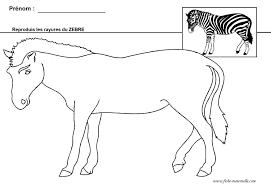 Dessins Gratuits Colorier Coloriage Zebre Imprimer