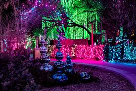 Denver Zoo Holiday Lights Christmas And Holiday Events In Denver For Kids And Families