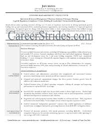 sample resume business process management resume exles - Business Process  Management Resume