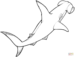 Hammerhead Shark Coloring Page Shark Coloring Marine Life Coloring ...