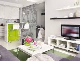 Furnishing Studio Apartment A Platform Bedroom In This Splitlevel - Modern studio apartment design layouts