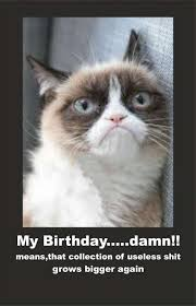 grumpy cat birthday bird. Delighful Cat Grumpy Cat Birthday Card Luxury Angry Elegant  Bird With A