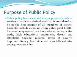 policy formulation and processes 11 purpose of public policy public policy