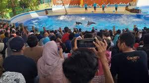 Pantai sigandu kabupaten batang jawa tengah~mantai sore sama istri 🔴(live). Libur Lebaran 2019 Pengunjung Batang Dolphin Center Capai Dua Ribuan Pengunjung Sehari Tribun Jateng