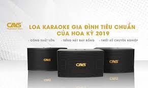 Top 3 Sản Phẩm Loa Karaoke Gia Đình Đẳng Cấp Của CAVS Professional