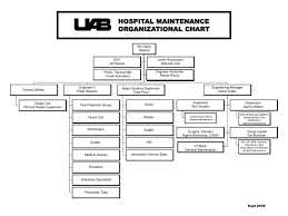 Ub Organizational Chart Ppt Hospital Maintenance Organizational Chart Powerpoint