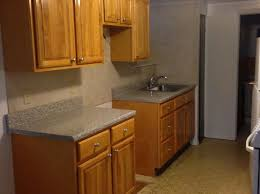 Spring Creek Nehemiah Is An Affordable Housing Success Story In New York City Apartments For Rent By Owner